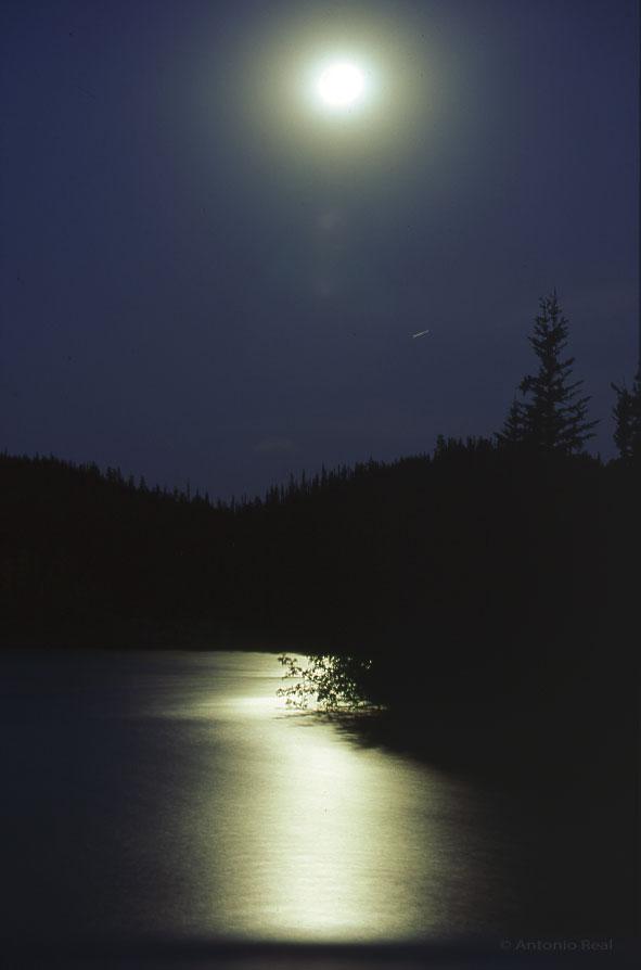 thumbnail_Rio-Yukon-y-luna